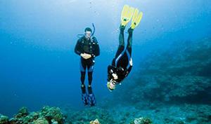 The Master Scuba Diver