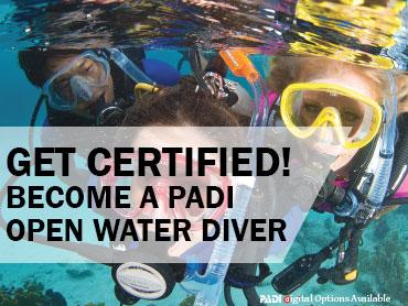 Get Your Open Water Certification