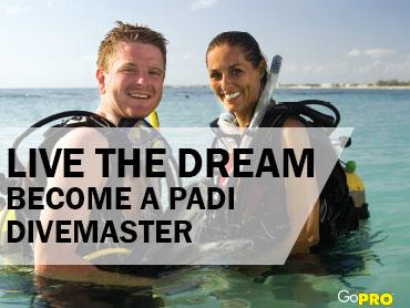 Become a PADI Divemaster