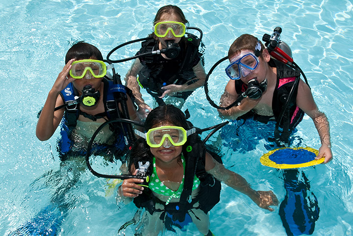 Seal Team | The Dive Shop