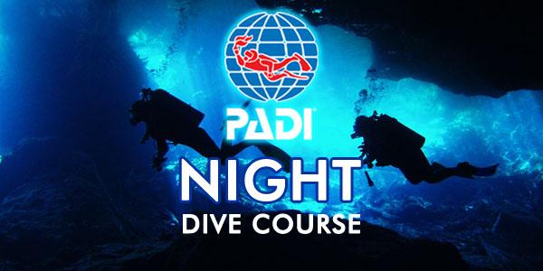 Night diver the dive shop for The dive shop